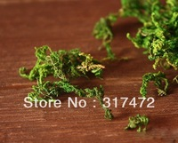Dried Flower Moss For DIY jewelry making glass globe necklace Fairy Dust Bottles DIY Bottles(Sold in per lot of 20 packs)
