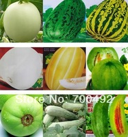 wholesale 450seeds 9 kinds melon seeds Japanese sweet treasure, fallen petal sweet,  sweet tooth, the gold, fruit melon seeds
