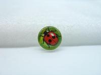 10pcs 12mm Handmade Photo Glass Cabochons (Ladybug Beetle) GB51-34
