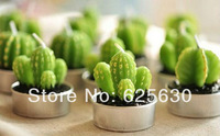 2014 fashion hot sale Free shipping Creative Green Cactus candles smoke-free Valentine Day Gift Plant candles Pot candles