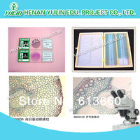 Free shipping! Wholesale,20pcs glass microscope slide 7101 Anatomy Prepared Slides for microscope