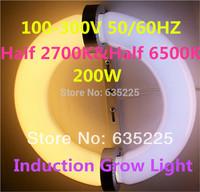 400W(2*200W) Circular induction grow light with ballast half 2700K half 6500K