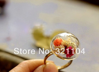 Free ship! 50sets/lot 24mm semidome Glass Bubble & Ring set DIY Jewelry Findings NEW (not include the fillers)