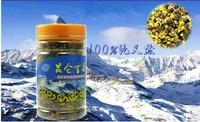 hot sale 40g xinjiang kun lun snow daisy chrysanthemum flower tea help lower blood pressure slimming beauty