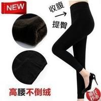 2014 winter thicken warm velvet pants colored leggings for women Wholesale