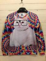 3D Print Animal Sweater Fat Cat Print Hoodies 3D Sweatshirt Women Sportswear