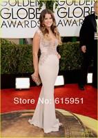 2014 New Lace Applique Celebrity Dress Sosie Bacon Golden Globe Awards V-neckline Mermaid Chiffon Floor Length Prom Dress MR028