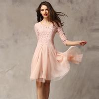 spring 2014 new European and American women's chiffon skirt slim basic lace one-piece dress Slim thin sleeve lace skirt