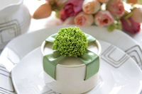 Hot Sale Bride and Groom Box  Free Shipping 10pcs/lot Ribbon Wedding  Party Candy Box Favor Gift Boxes wedding box  WD14010