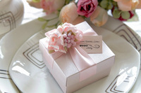 Hot Sale Bride and Groom Box  Free Shipping 10pcs/lot pink wedding candy box sweet box WD1406