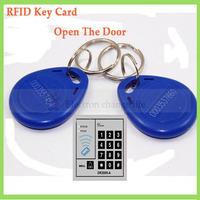 125kHz RFID Reader Writter proximity id card tag Card Copier duplicator Keyfobs key fob Tag IC Tag Token Key Ring Blue 100pcs