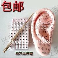 new upgrade ear massage set model english version 12cm /ear acupuncture needle pen /600 beads sticker/