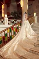 2014 new Yarn quality  , cute-type , train wedding dress t16