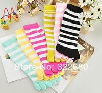 Free shipping female models in tube bar A-2 toe socks toe socks adult bar