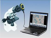 microscope digital promotion