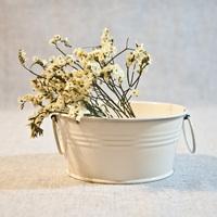Zakka beige flower pot metal tub flower dried flowers bucket storage kefirs home decorations