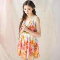 New Spring Dress 2015 Printed Chiffon Dresses V-neck Floral Beach Vest Dress Free Shipping L21240