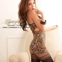 2014 New  Arrivel Women's Summer Dress Oblique Fashion Sexy  Leopard Grain Dress Basic Short-sleeve Dress Free Shiping