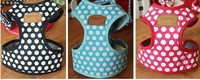 022248Dog collar The dog leash  Red dot     Sky blue   The dog chain   strong  convenient  beautiful  security  fashion