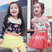 2014 spring flower girls clothing baby child long-sleeve dress skirt dress clothes qz-1221 fashion princess dress freeshipping