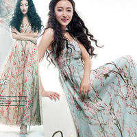 Fashion ZYX-3312 Spring & summer new 2014 women printing dress Lady beach mop chiffon long dress plus size free shipping