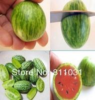 Hot selling 10pcs Bonsai Mini Watermelon Seeds Fruit seeds DIY home garden free shipping