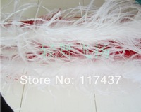 Dyed Ostrich Feather Boas in different colors