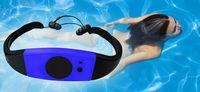 2014 New 4GB Waterproof MP3 Music Player FM Radio Swimming Surfing SPA IPX8 Sports