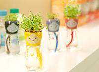 DIY Gift flower planters pot mini bonsai desk decoration home Free shipping Mini flower pots with seeds