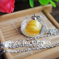 Free ship!! good 20sets/lot silver color 25mm half glass globe &lace base & cap &  necklace set glass vial pendant glass cover