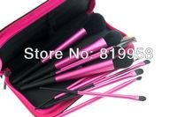 Hot sale!!! 11pcs Blush Brush Eye Brush Brush Kits With Bag