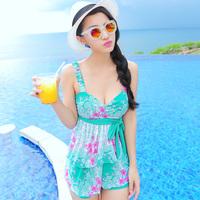 Free shipping brand bikini 2014 swimwear split twinset women's swimsuit hot springs