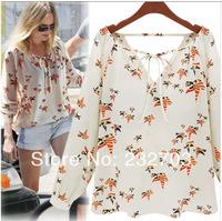2014 spring women's fashion multicolour pigeon pattern V-neck strap long-sleeve chiffon shirt female