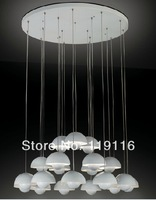 Non-standard stylish modern bedroom chandelier 20 lights. Can be customized