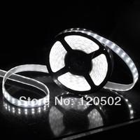 Free shipping 5M Double Row 5050 Waterproof LED Strip 600LEDs 120LEDs/M 12V 60W White/Warm White
