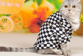 Все - матч одежды питомец кардиган кошки верхней одежды любимчика ватные куртки осень и зима одежды собаки
