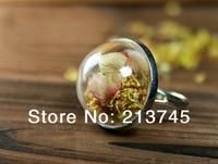 Free shipping!!! Fashion Half 20mm  glass globe & silver Ring base set glass bubble Glass Cover Vial Pendant  Glass Bottle
