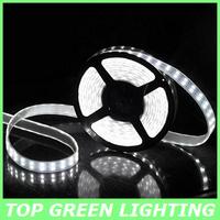 Hot Sell 5M SMD 5050 Waterproof LED Flexible Strip Light 120LED/M DC 12V LED Ribbon Light SMD5050 LED Rope Lighting