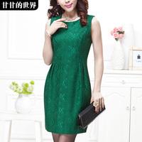 Fashion chic elegant formal 2014 spring one-piece dress  Free shipping