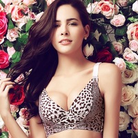 T2054 Rose Plato genuine deep V sexy leopard bra gather close Furu adjustable bra ladies underwear