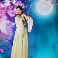 Chinese Folk Dance Wear Cosplay Costume fairies girl clothes tang suit hanfu women's  elegant chiffon  tang dynasty clothing