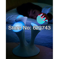 Free Shipping SLONGLIGHT NEW DESIGN Romantic Color changing Glo Nightlight with Portable Glowing Balls,globe lamp Christmas Gift