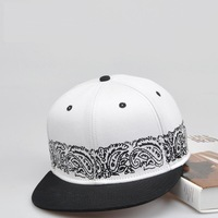 2014 New Blank  Snapback Hats Paisley Baseball Caps Hot Flat Hat Hip Hop Cap for Men and Women 20 pcs/lot Free Shipping 2 Colors