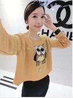 New 2014 Fashion Winter and Autumn Women's Outerwear T shirts Owl pattern short design Long-Sleeve O-Neck sweatshirt Free ship