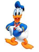 Free shipping ,  Wall Stickers,  Donald Duck  cartoon sticker