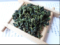 10g china olong tea anxi tie guan yin tea The Fen flavor Oolong Tea authentic Products
