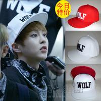 Free shipping Wolf flat-brimmed hat  flat brim Baseball Cap hip-hop hiphop cap benn