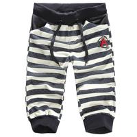 Summer harem pants male sports capris breeched male slim capris health pants 601-k01p55