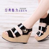 2014 Summer new fashion Platform wedges sandals women sandals DunHu607