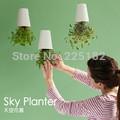 Sky planter flower pot flower bonsai decoration with Dia.13cm,Hight 19cm